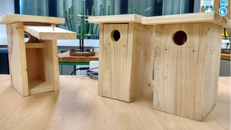 Los alumnos del instituto construyen casetas para pájaros y murciélagos
