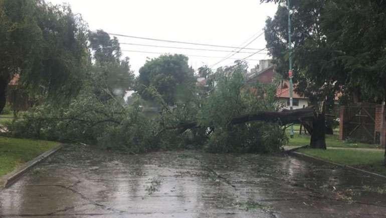Convocatoria de ayudas para los daños producidos por la tormenta de junio de 2018