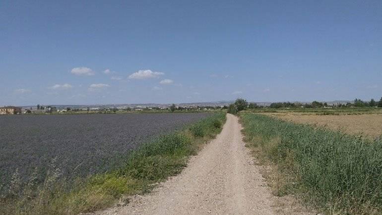 La dotación de la Acequia Mayor será de la mitad, debido a la escasez de agua