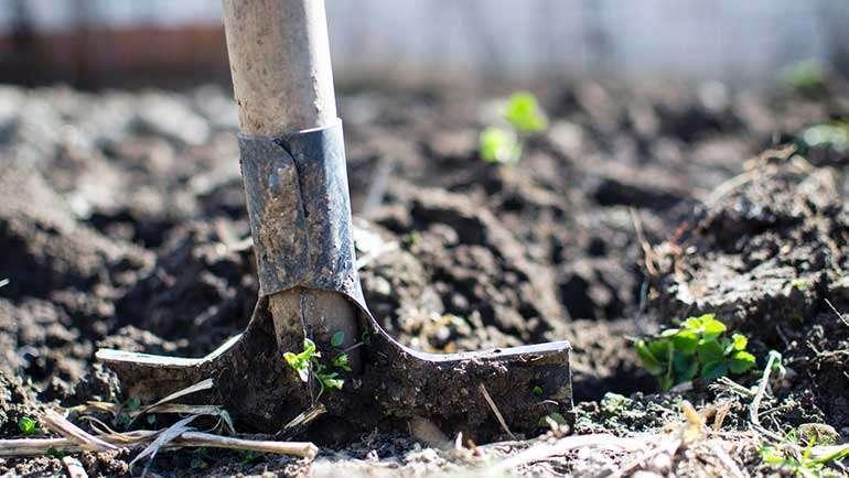 Bando Término de Urdán: Continúa la sequía