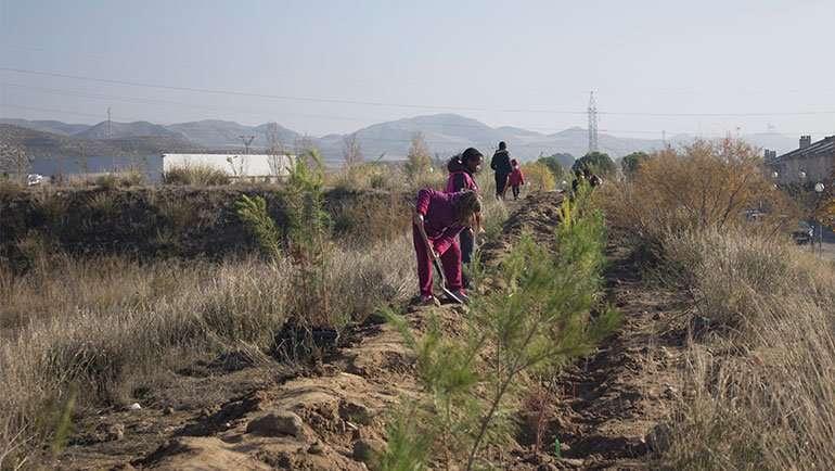 La Puebla se suma a la mayor plantación colaborativa dentro de la iniciativa #PorElClima con 200 pinos piñoneros